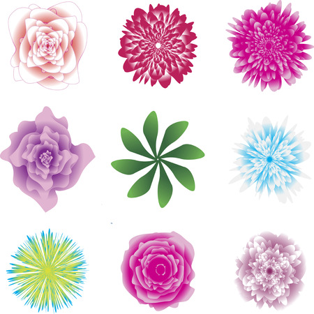 Flower set. Beautiful coloured flowers and leaves isolated on white background. Vector illustration. Clipart, icons. Vettoriali