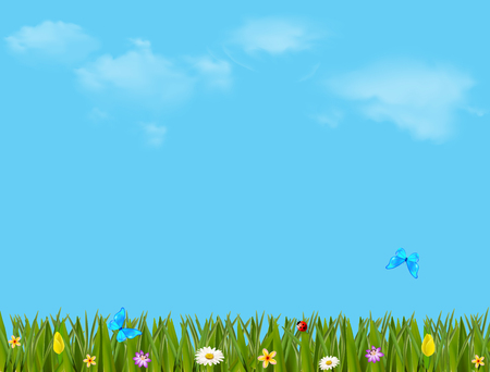 Colorful illustration with beautiful meadow field with green grass, vibrant flowers and butterflies on blue cloudy sky background