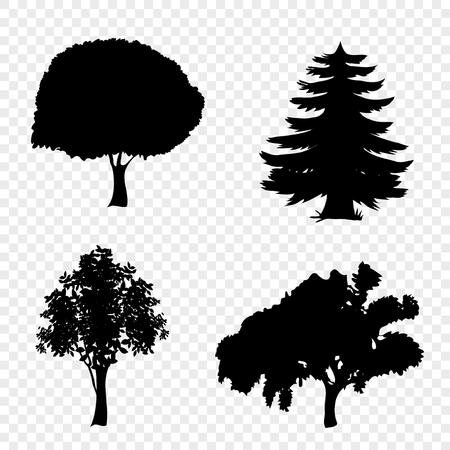 Vector set of trees icons. Black silhouettes of foliar and pine trees isolated on transparent background. Illustration