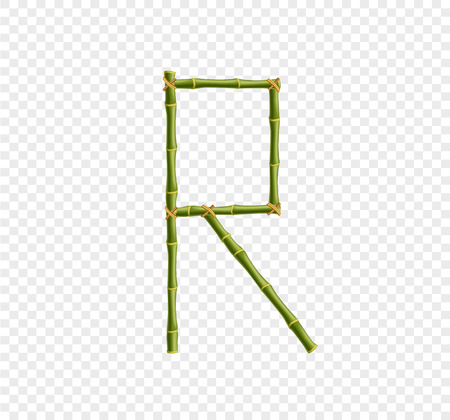 Vector bamboo alphabet. Capital letter R made of realistic green bamboo sticks poles isolated on transparent background. Abc concept for creating words, text, advertising, message. Stock Illustratie