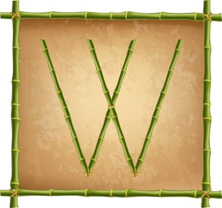 Vector bamboo alphabet. Capital letter W made of realistic green bamboo sticks poles on old paper, papyrus, parchment or canvas background. Abc concept for creating words, text, advertising, message.