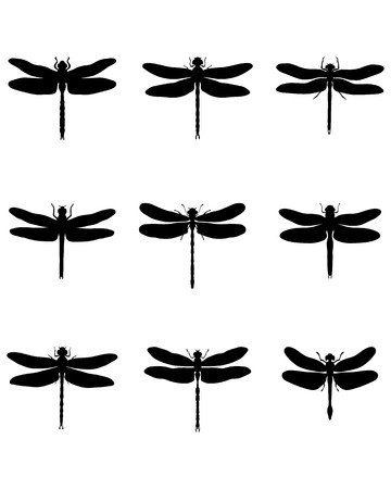 dragonflies: Black silhouettes of dragonflies Illustration
