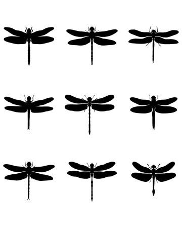 black: Black silhouettes of dragonflies Illustration