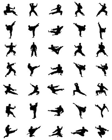 kata: Black karate silhouettes on the white background, vector