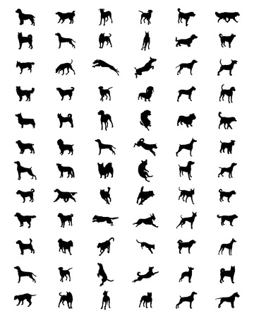 husky puppy: Black silhouettes of different breeds of dogs, vector