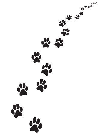 Footprints of dog, turn right or left