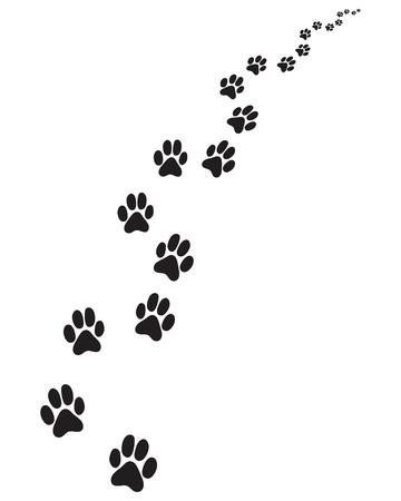 Fußabdrücke des Hundes, rechts oder links abbiegen