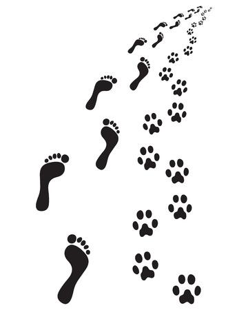 Empreintes de pieds et pattes de chien, tournez à droite Vecteurs