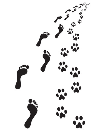 Footprints of feet and paws dog, turn right Vector Illustration