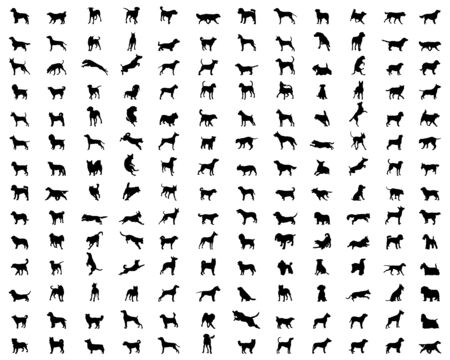 Black silhouettes of different breeds of dogs on a white background Ilustrace