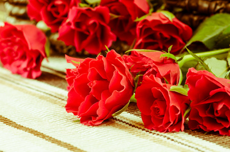 red roses image on cloth table background photo