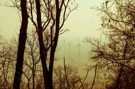 several windmills filtered retro effect