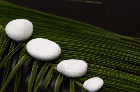 white stones on palm leaf