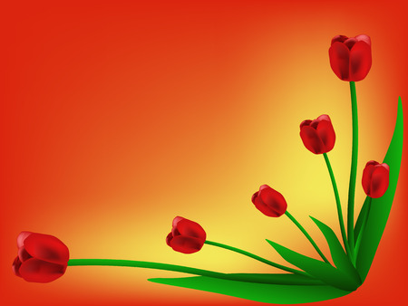 adorn: red tulips on yellow red background Stock Photo