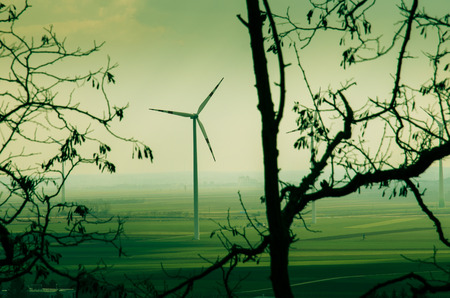 subset: windmills over green field image behing branches of tree