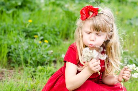 blowing dandelion: beautiful blond girl blowing dandelion