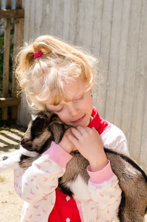 baby goat: beautiful blond girl holding baby goat Stock Photo