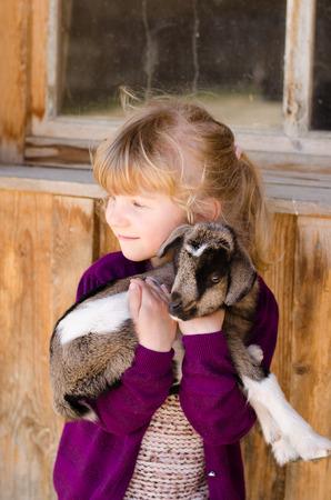 beautiful blond girl holding baby goat 스톡 콘텐츠