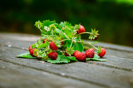 wild strawberry: red wild strawberry with green leaves in wooden background Stock Photo