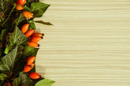 briar: orange briar fruits background