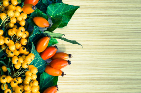 briar: orange briar and yellow berry fruits background  Stock Photo