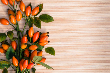 briar: orange briar fruits background image
