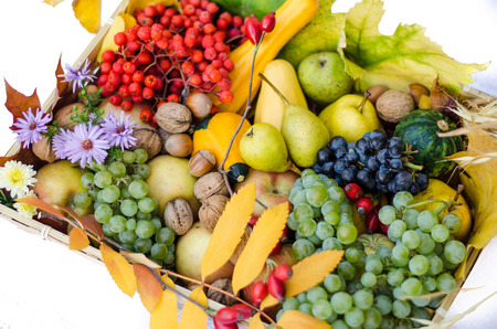 healt: group of colorful autumn fruits in a basket