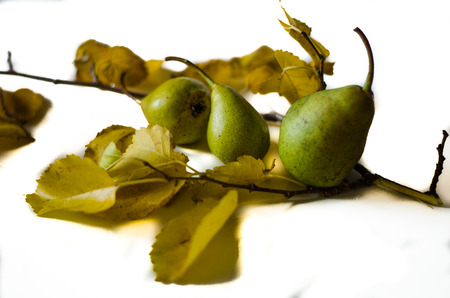 healt: group of green pears and leaves Stock Photo