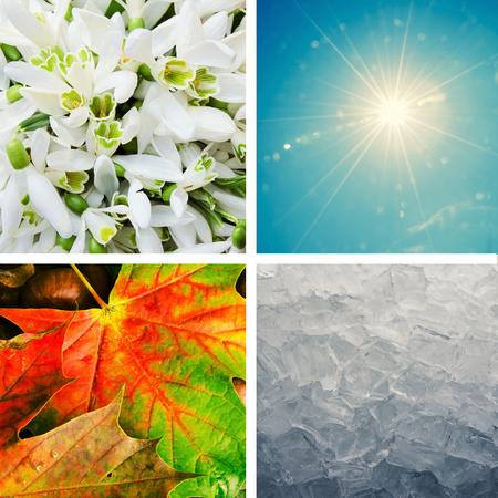 four season: colorful four season concept collage Stock Photo