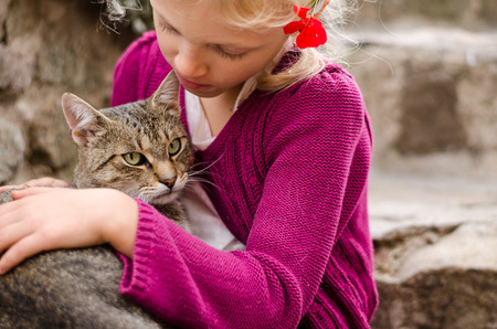 blond girl: adorable blond girl holding domestic cat Stock Photo