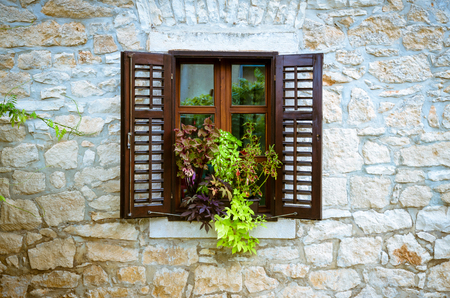 open windows: open windows and plant pots
