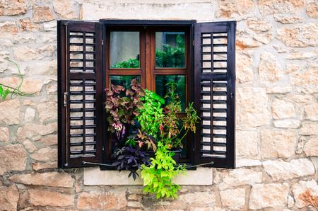 open windows: open windows and plant pots