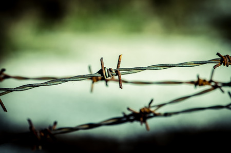 barbed wire fence: views through barbed wire fence