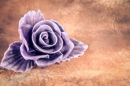 purple rose: purple rose against brown background