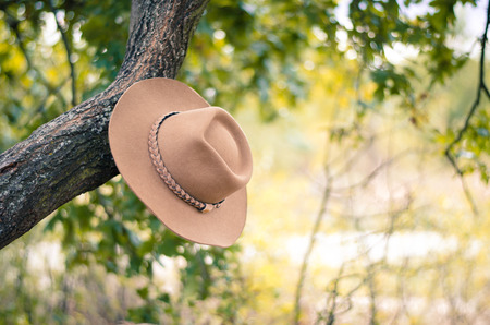 hung: brown cowboy hat hung on the branch in the meadow retro effect