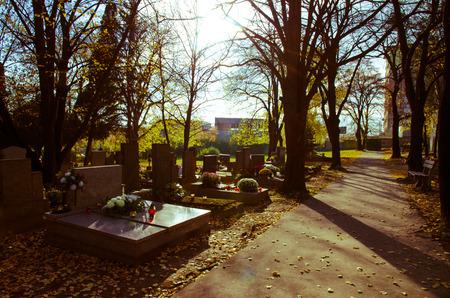 tumbas: tumbas y tumbas en el cementerio de otoño