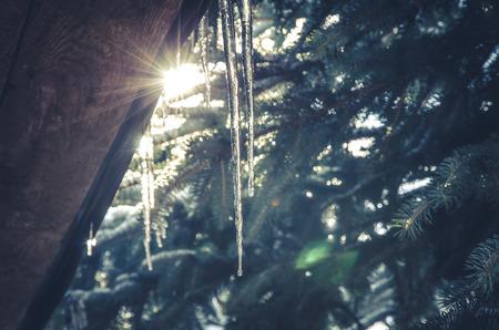 sopel lodu: icicle in winter time season