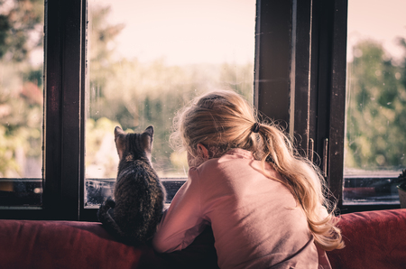 blond little girl holding a cat pet and looking through the window together Standard-Bild