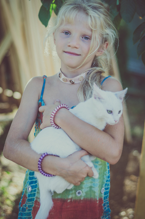 adorable cute white kitty cat in hands of little child girl Zdjęcie Seryjne