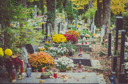 decorated graves in cemetery during All Saints Day in autumn time