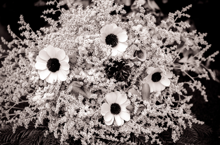 Decoration from dry colorful flowers in the cemetery at All Saints Day in autumn time monochrome