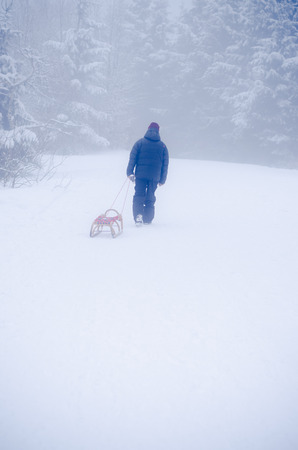 man walking alone with winter sleight in forest