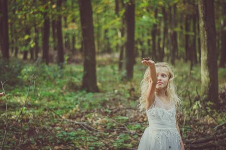 one little girl in dress among autumnal trees in forest in golden hour atmosphere