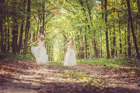 two little princesses in wedding dress walking in path among autumnal trees in forest in golden hour atmosphere