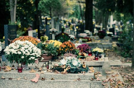chrysanthemum flowers decorations during christian All Saints Day event lying in the tomb in the cemetery Stock fotó