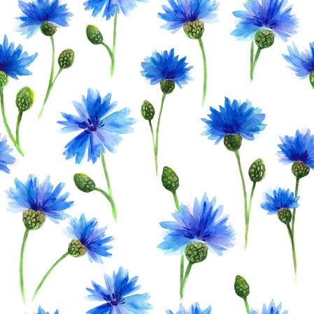 水彩画青、白い背景でヤグルマギク。水彩画展。花の背景。 写真素材