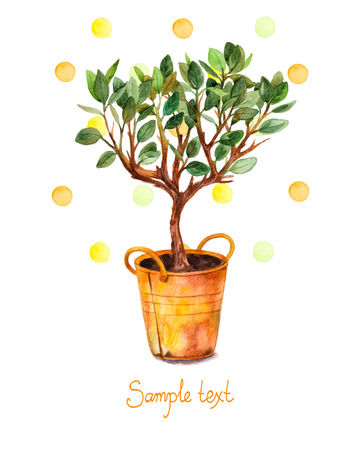 Watercolor tree in pot with watercolor splashes. Vector illustration. Spring time. Beautiful card painted watercolor tree in yellow pot. Illustration