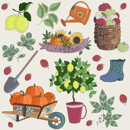 Vector Illustration of Set Gardening Elements. Set of fruits and vegetables. Flowers and tree elements. Illustration