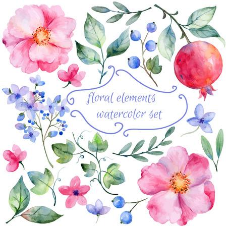 owocowy: Zestaw różnych czerwone różowe kwiaty i granatu do projektowania. Róże akwarela liści. granat. Zestaw elementów kwiatu dla swoich kompozycji.