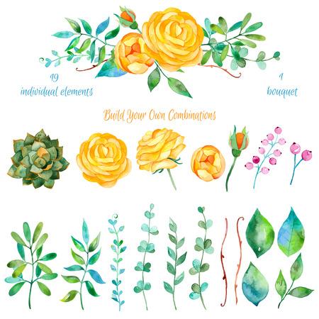 compositions: Vector floral set.Colorful collezione floreale con foglie e fiori disegno watercolor.Colorful collezione floreale con bellissimi fiori 1 bouquet.Set di elementi floreali per le tue composizioni.